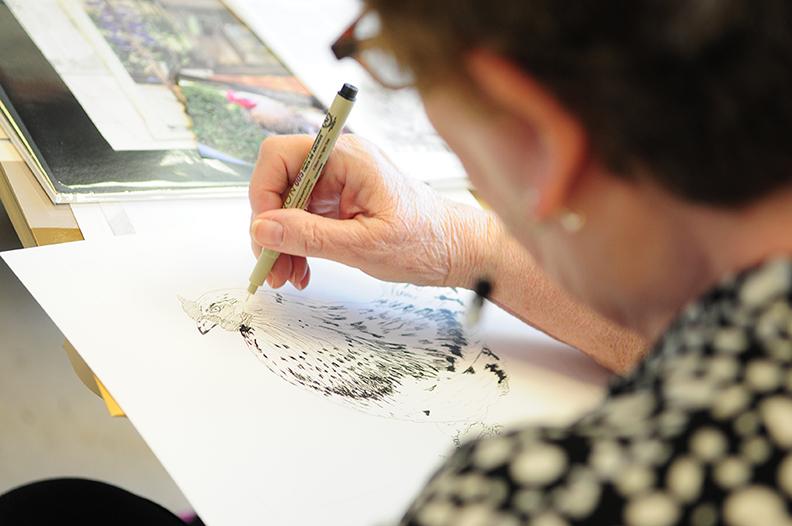 OLLI Drawing
