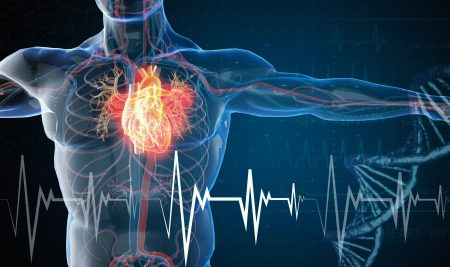 Are You Interested in Becoming an EKG Technician? Learn More Here.